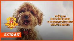 WAFFLE LE CHIEN WAOUH - la chanson du générique de ta série sur Piwi+ et myCANAL