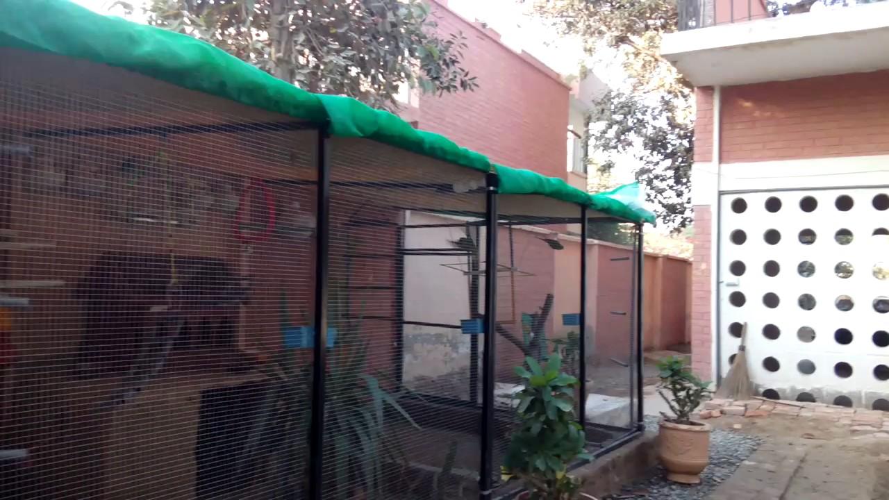 Bird Aviary at Nadia Birds Farm 2 - YouTube