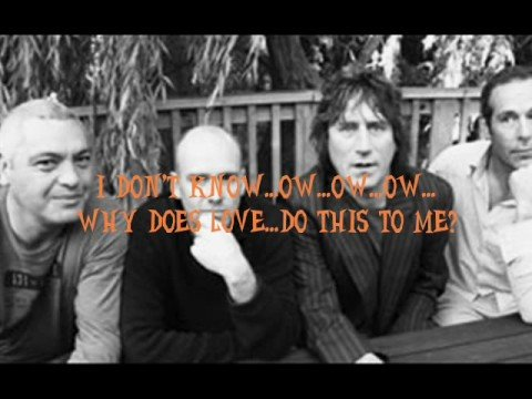Why Does Love Do This To Me? The Exponents- with Lyrics