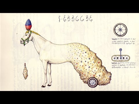 The Mysterious Book NO ONE Can Read: Ancient Voynich Manuscript