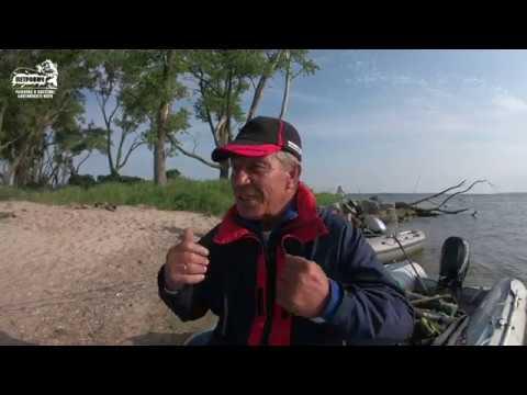 VLOG: Угорь. Коллективная рыбалка.Насыпной остров. Калининградский залив.