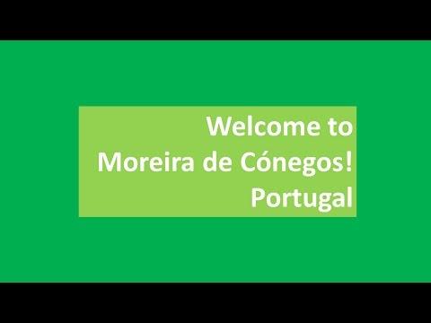 Welcome to Moreira de Cónegos!