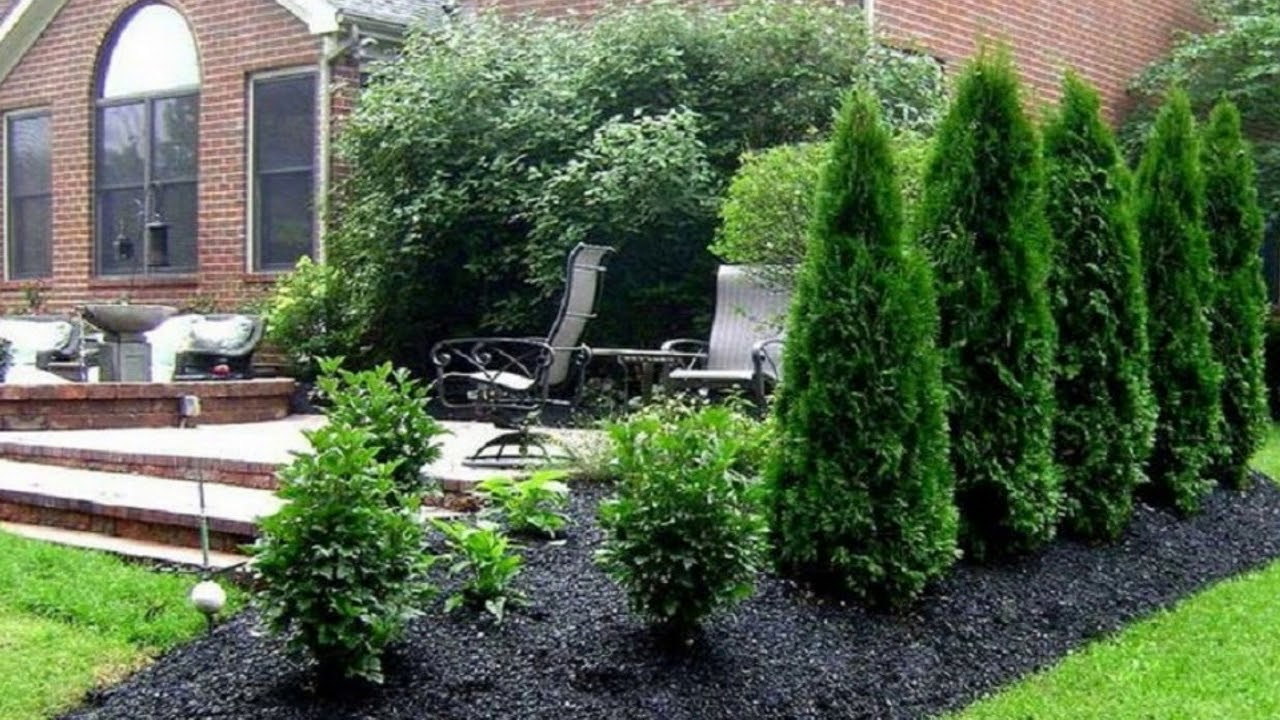 Garden Design Under Pine Tree I Garden Design Ideas Youtube