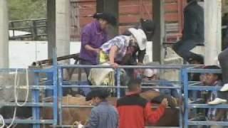 jaripeo-colonia magdaleno cedillo