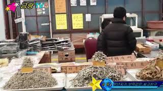 금랑TV제150회 페북방송*전통시장살리기*거진전통시장/…