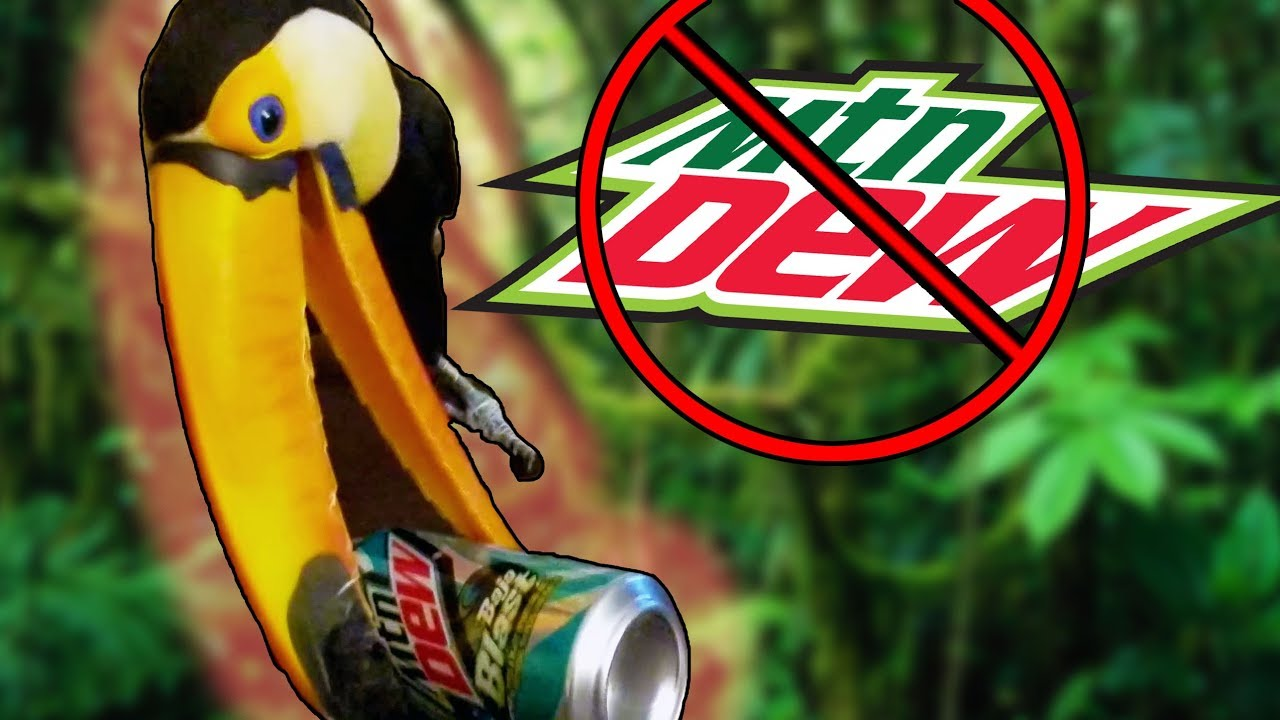 toucan-vs-mountain-dew-can-crushing-with-her-bill
