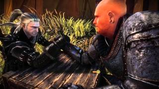 Witcher 2 armfight