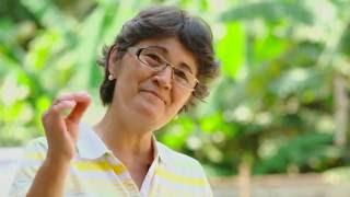 A HISTÓRIA DA BALA DE BANANA  | Sebrae/PR