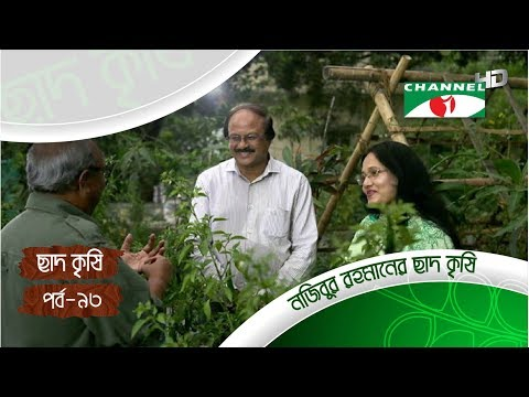 Rooftop farming | EPISODE 93 | HD | Shykh Seraj | Channel i | Roof Gardening | ছাদকৃষি |