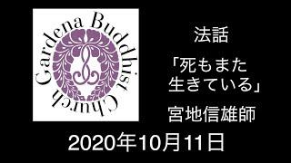 101120 Miyaji N