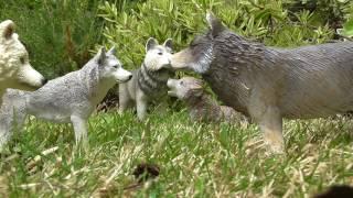 Slated    Episode 3  (A schleich Wolf/dog movie)
