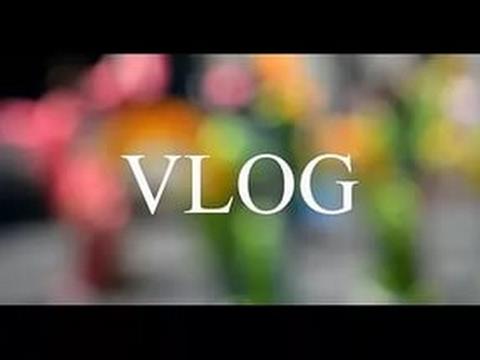 Vlog#2. Что подарить вегетарианцу на день рождения?100 подписчиков!)