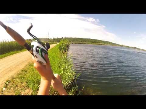 BuzzBait Fishing Banner Marsh!