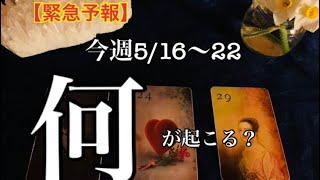 グランタブローでみる✨5/16~5/22⭐️✨今週どんなことが起こるのか🌟恐ろしく当たるルノルマン🔮恋愛❤️仕事💰健康🌈