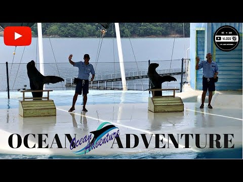 Ocean Adventure, Subic Bay Zambales Philippines (Travel Vlog)