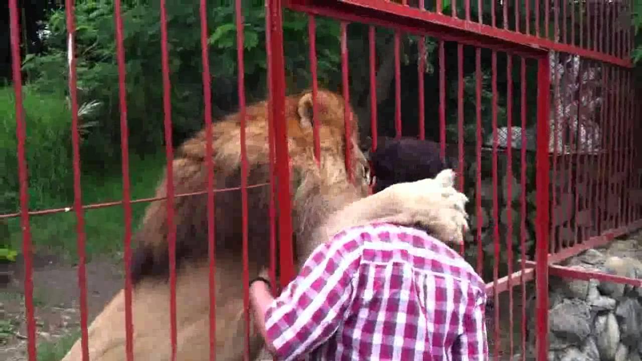 Peta Zoos