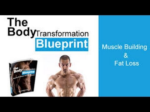 The body transformation blueprint reviewsthe body transformation the body transformation blueprint reviewsthe body transformation blueprint booksean nalewanyj malvernweather Gallery