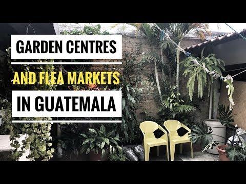 GARDEN CENTRES & FLEA MARKETS - DEALS IN ANTIGUA, GUATEMALA