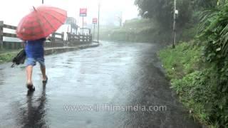 Always carry an umbrella with you in Cherrapunji, Meghalaya
