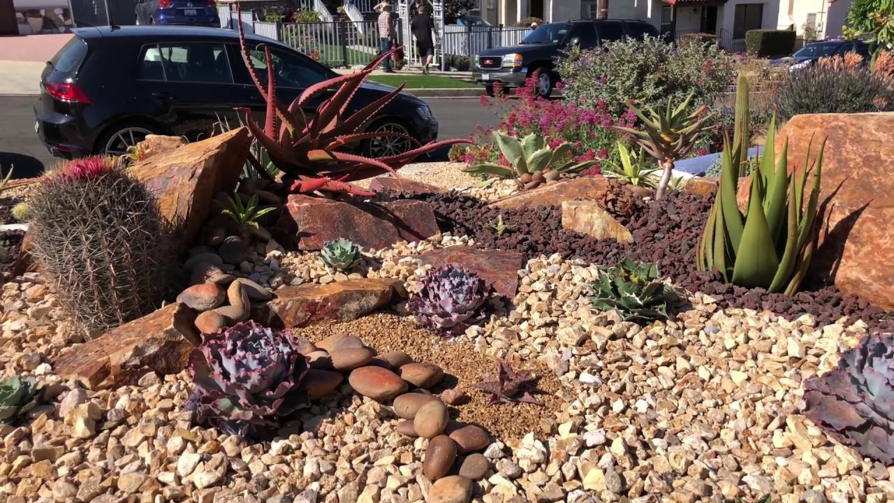 San Pedro Succulent Garden Walkthrough - YouTube