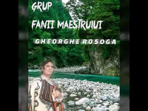 Gheorghe Rosoga.sapa-i grea