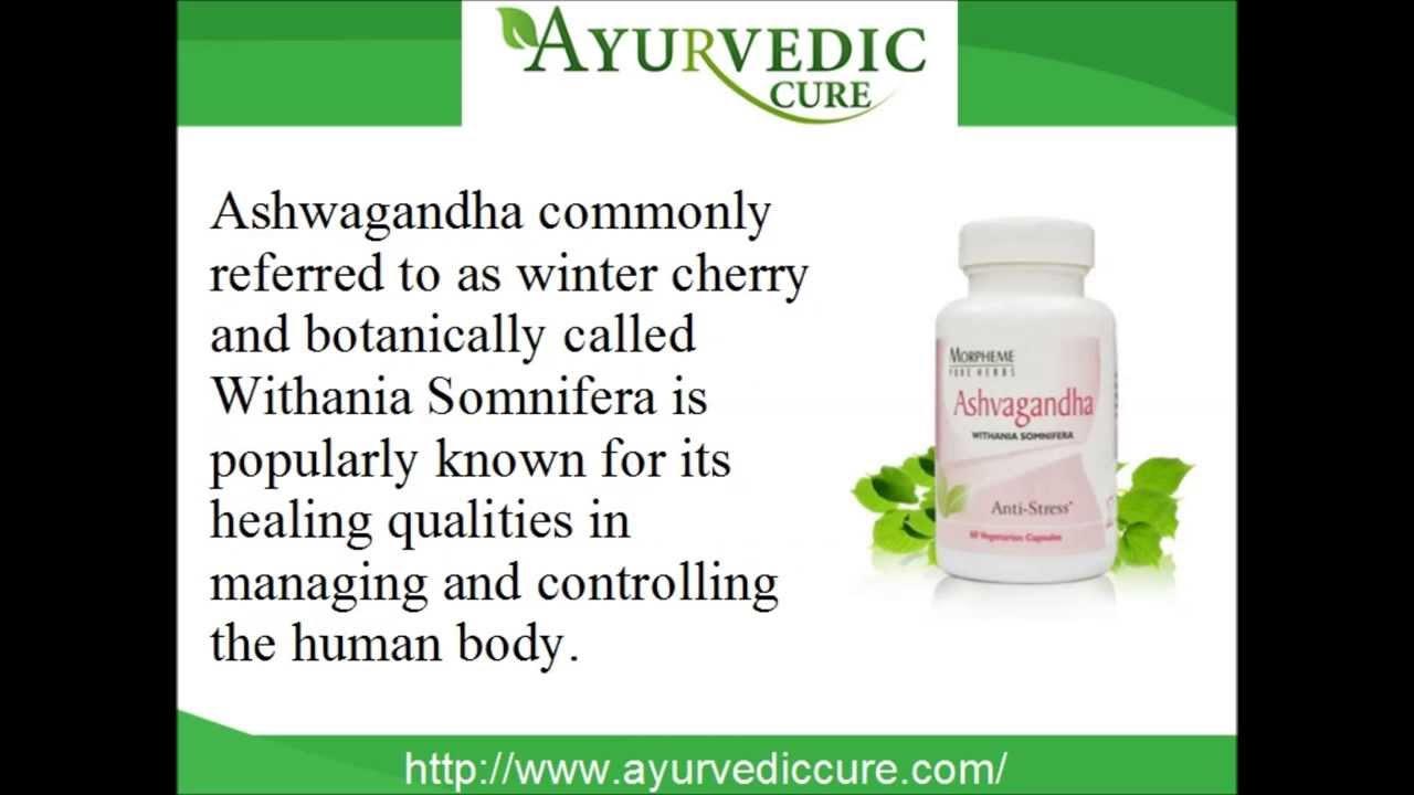 ashwagandha powder how to take