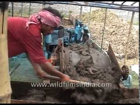 Soil preparation before farming in Indian Bio village