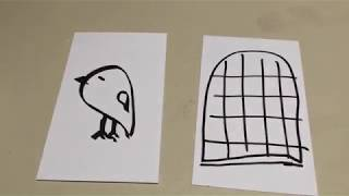 Bird in a Cage Illusion - FLEET Centre Home Science