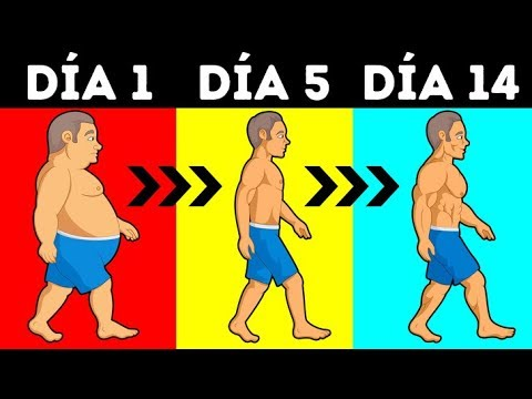 Cuantas calorias hay que consumir para bajar de peso rapido