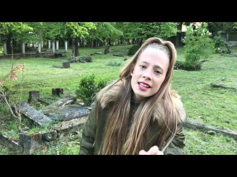 Shawn Mendes - Mercy cover by LeniStar