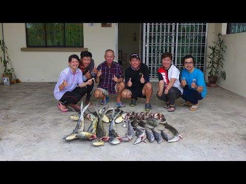 Rompin Fishing 2016