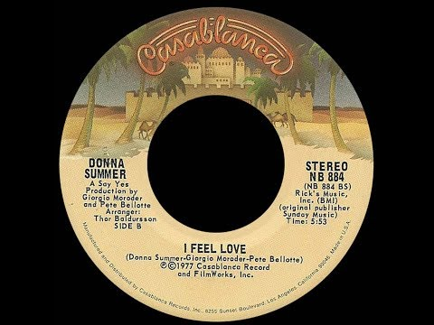 Donna Summer ~ I Feel Love 1977 Disco Purrfection Version