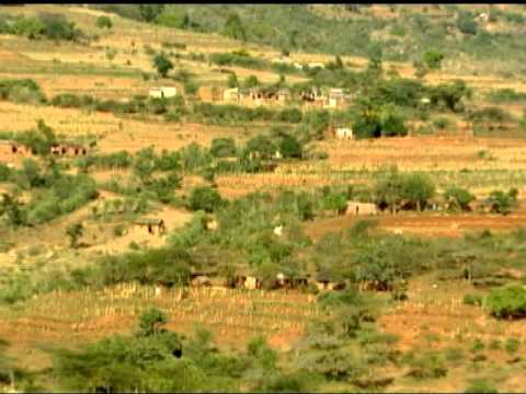 Kenya: Mobile Weather Forecast Helps Farmers