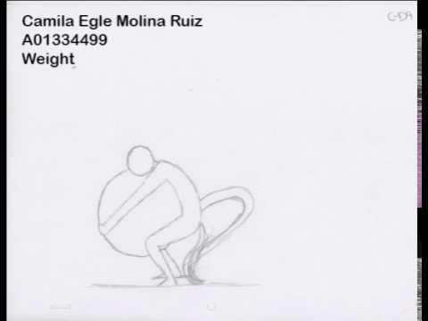 Weight Camila Molina A01334499