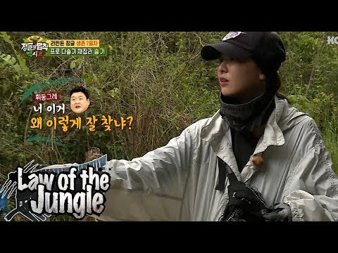 Seul Gi Keeps Moving Without Resting!!  Law of the Jungle Ep 320