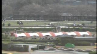 中山大障害・春 1987年 メジロアンタレス