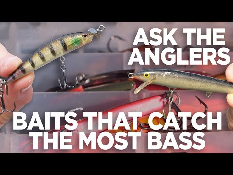 Name The Bait You Have Caught The Most Fish On, Ever   Ask The Anglers