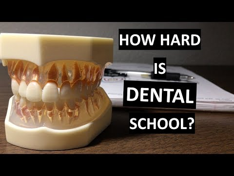How Hard is DENTAL SCHOOL? (compared to undergrad)