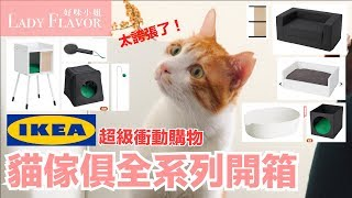"""[Unpacking] Get excited on shopping at IKEA cat furniture """"all"""" series  EP1 (not ad)"""