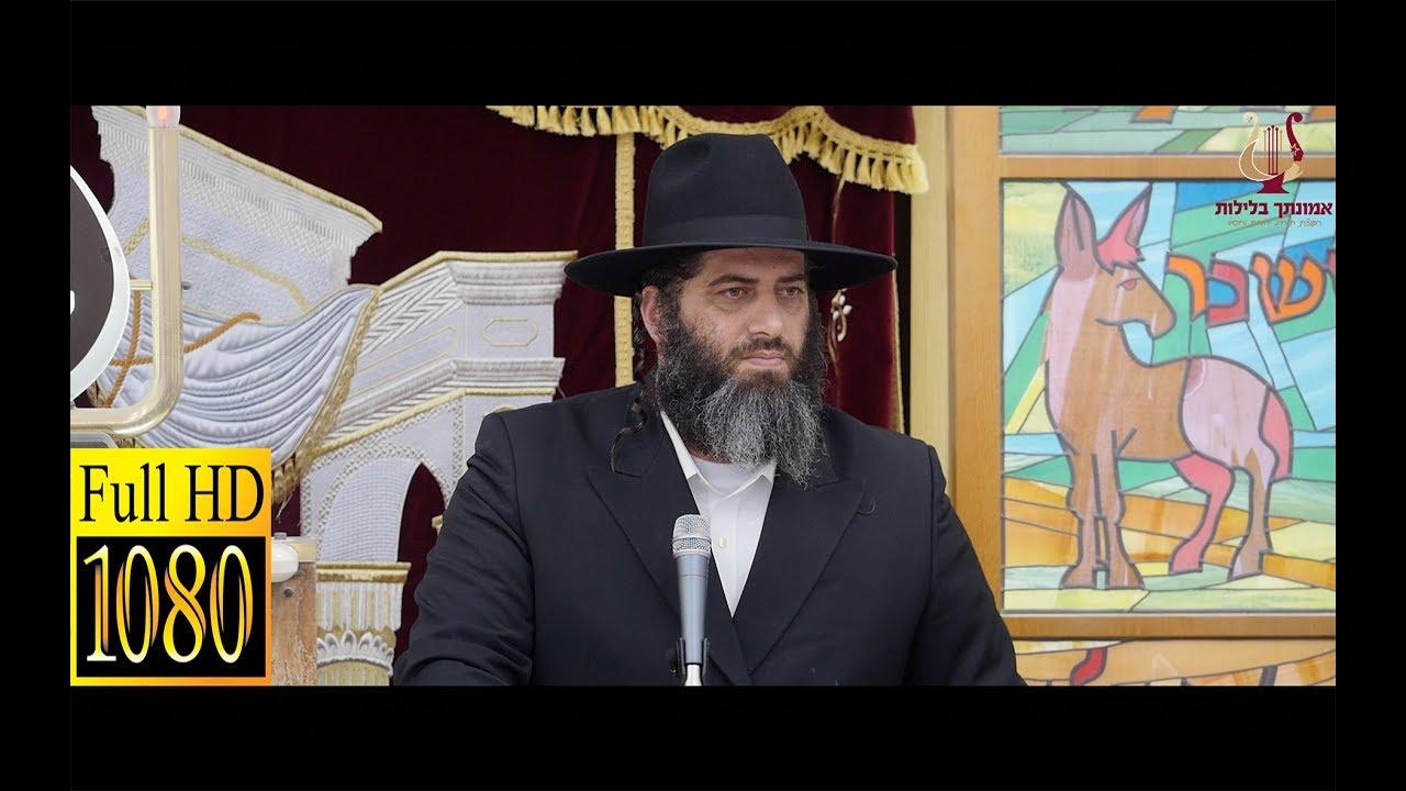 הרב רונן שאולוב בשיעור חריף ביותר על צניעות - מסירות נפש - תורה - עולם הבא !! בת ים 17-5-2018