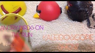 Angry Birds On The Run | Kaleidoscope show