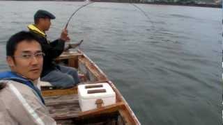 土佐和船 チヌ釣り 赤松で一枚目