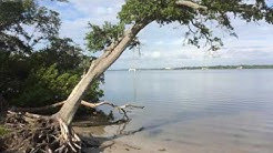 SECRET BEACH, OLDSMAR, FLORIDA