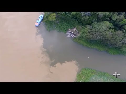 Drones Sobrevoam áreas Da Amazônia Para Monitorar Espécies De Boto