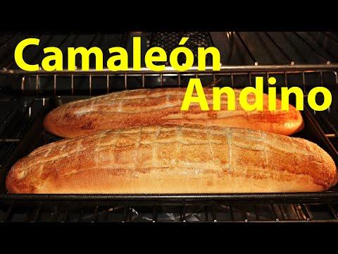 Receta de pan dulce Andino Camaleón paso a paso