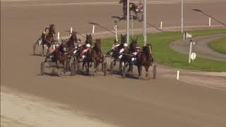 Vidéo de la course PMU PRIX BEAU GAMIN