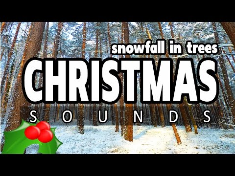 CHRISTMAS SNOWFALL in a FOREST ★ 10 HOURS ★ Best snow fall backing ambience for Christmas