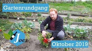Gartenrundgang Oktober 2019
