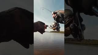 Рыбалка осенью Спиннинг с берега Джиг риг
