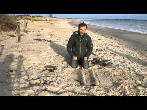 Barry and Ben The Geography Men - How to make your own Studland sand dune system